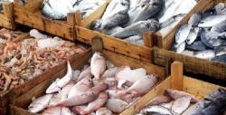 5 falsos mitos sobre el pescado que hay que desterrar