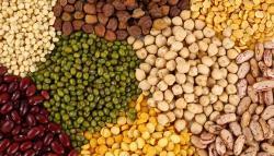 5 legumbres que (quizás) no conoces