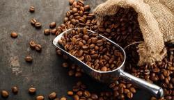 5 maneras de preservar y asegurarse un café siempre exquisito
