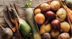 5 tubérculos y raíces gourmet para tener en la cocina