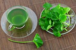 6 razones para beber té de perejil