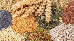 Alimentación ecológica: cómo reducir el impacto en la naturaleza