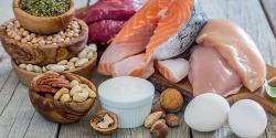 ¿Cuáles son los alimentos más ricos en proteínas?
