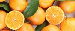 Diez motivos para comer naranjas durante todo el año