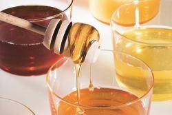 Escuela de cocina: miel, cómo usarla en la cocina