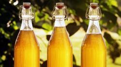 Hidromiel: el fermentado de los reyes