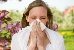 La gripe de primavera se cura en la mesa