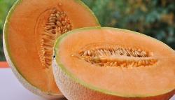 Melón: orígenes y propiedades de la fruta más fresca de verano