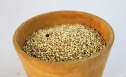 Redescubriendo el amaranto: cocción y recetas