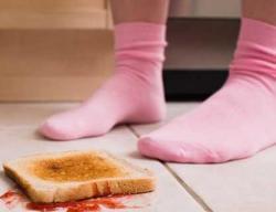 Se pueden comer alimentos que cayeron al suelo?