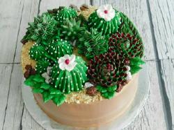 Succulent cake, la nueva tendencia en pastelería