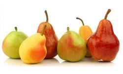 Todo sobre la pera: propiedades y tipos