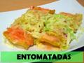 ENTOMATADAS CON POLLO
